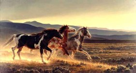 wild-horses